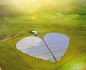 heart-shaped solar plant